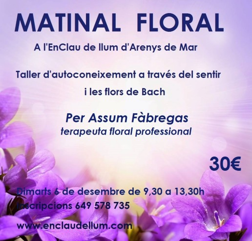 matinal floral bach